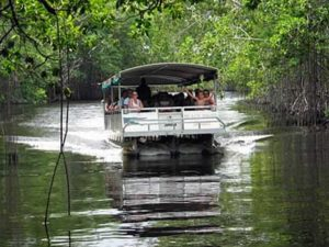 jamaica-get-away-tours-black-river-safari-2
