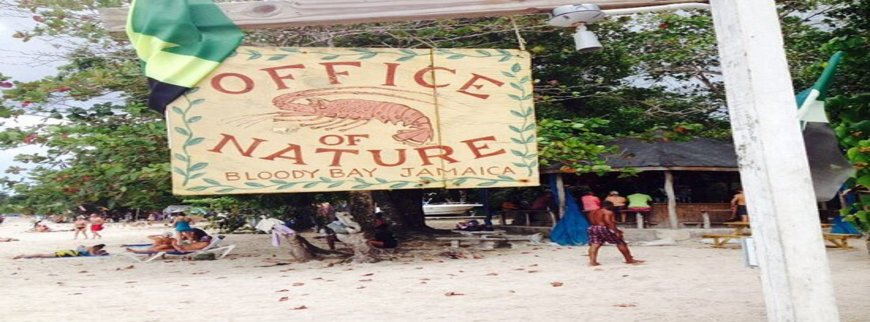 Office-of-Nature